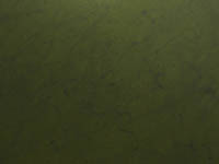 Marmokarpfen